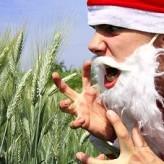Anger and Christmas Holidays